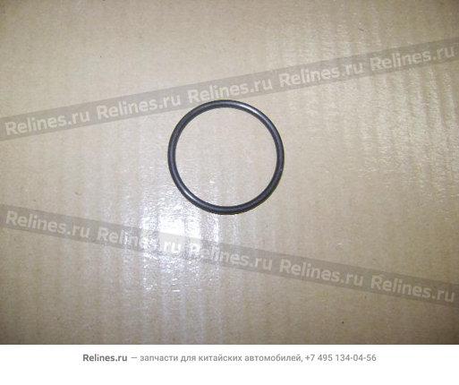 Кольцо уплотнительное водяного насоса - 1307012-E10