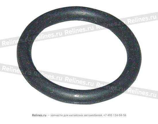 Ring o - A15-481254CV
