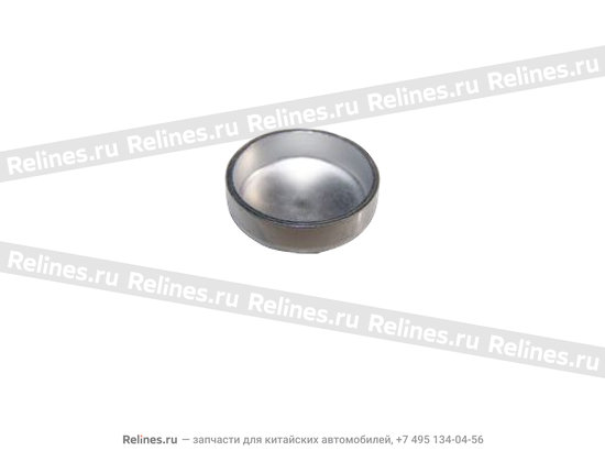 Заглушка ГБЦ задняя (18 мм) - 480-1003018