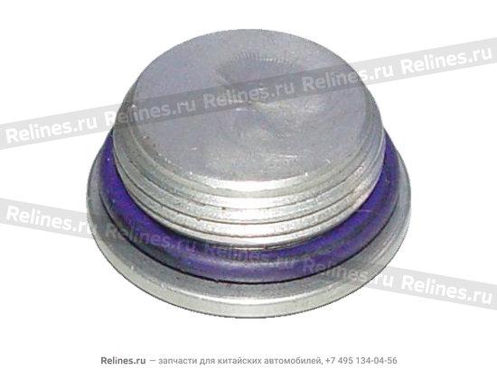Plug - cylinder/head seal - 04693124aa