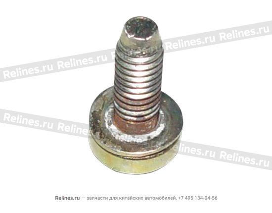 Screw head with gasket - A15-BJ06501957