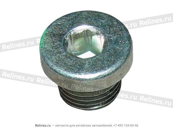 Plug(M10) - A15-481250CV
