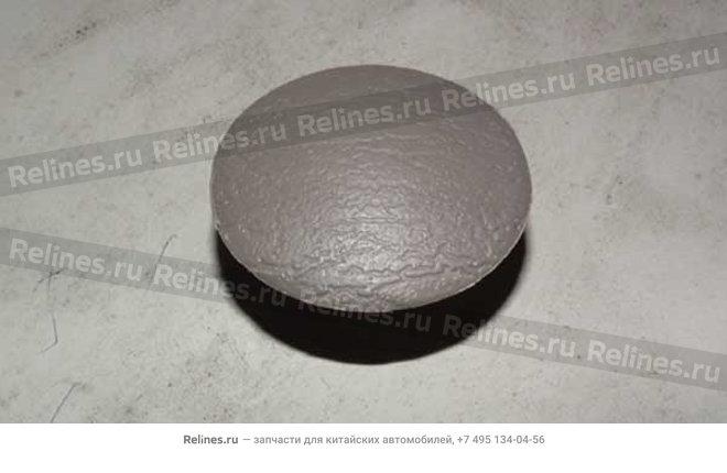 Cover - A15-5305013CG
