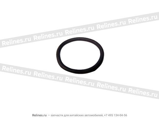 Seal ring - 04693107aa