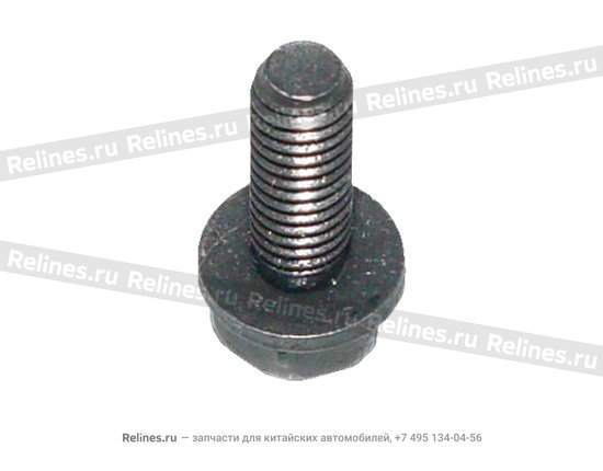 Screw head with gasket - A15-BJ06102001