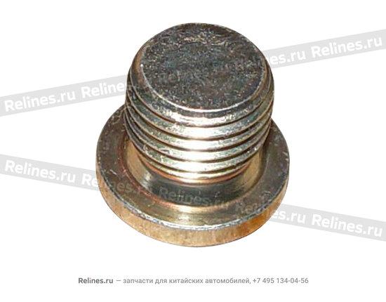 Plug(M14) - A15-481248CV