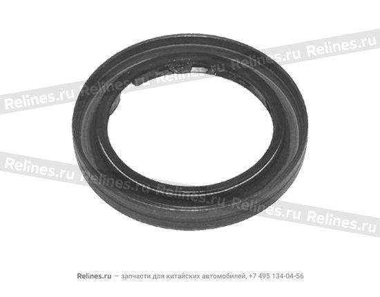 Oil seal - input shaft - A15-481274CV