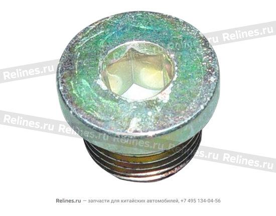Plug magnet - A15-481857CV