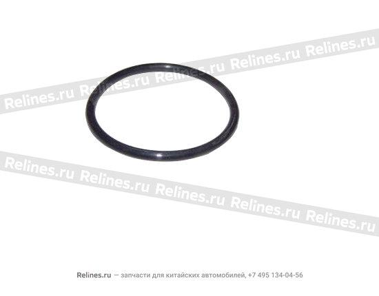 Кольцо уплотнительное - A11-1109219